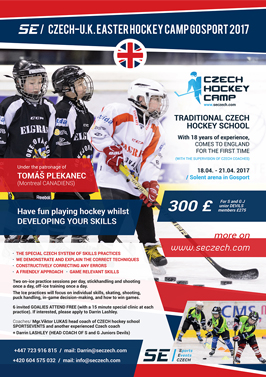 SE Hockey Camps PORTSMOUTH